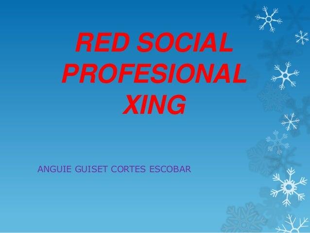 RED SOCIAL    PROFESIONAL        XINGANGUIE GUISET CORTES ESCOBAR