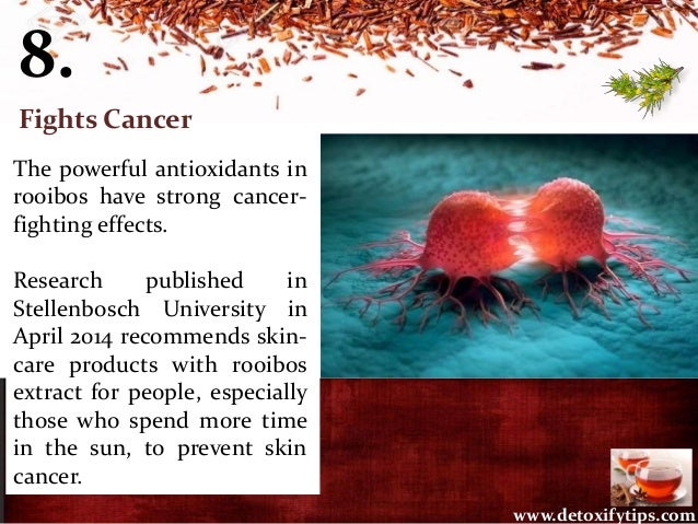 8. The powerful antioxidants in rooibos have strong cancer- fighting effects. Research published in Stellenbosch Universit...