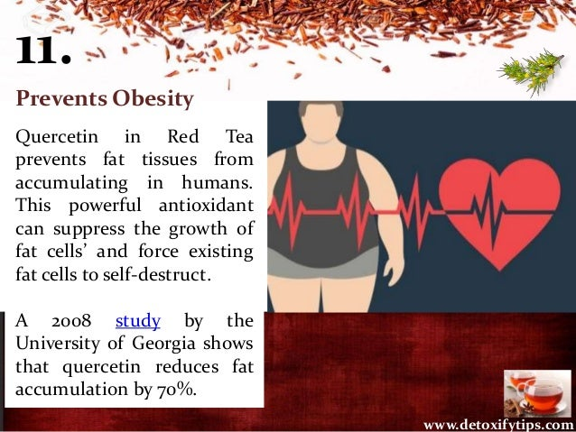 11. Prevents Obesity Quercetin in Red Tea prevents fat tissues from accumulating in humans. This powerful antioxidant can ...