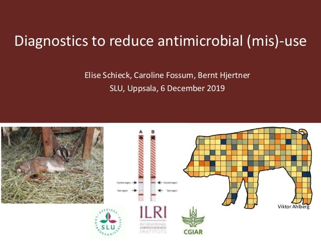 Diagnostics to reduce antimicrobial (mis)-use Elise Schieck, Caroline Fossum, Bernt Hjertner SLU, Uppsala, 6 December 2019...