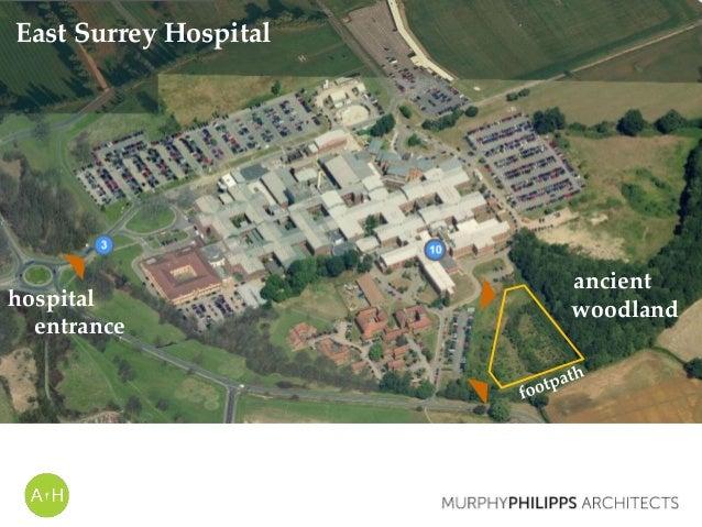 East Surrey Hospital ancient woodlandhospital entrance