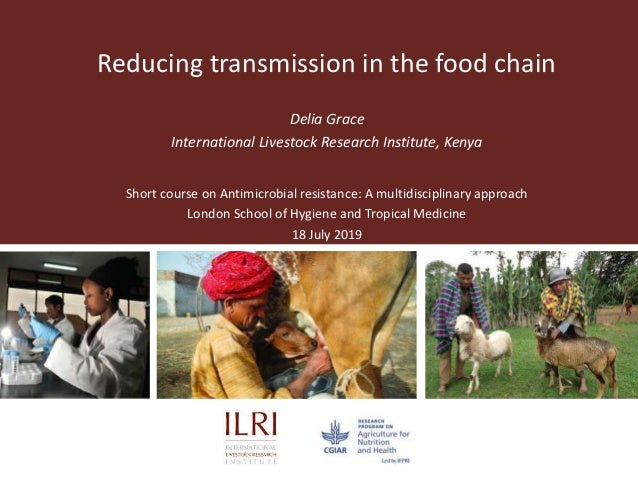Reducing transmission in the food chain Delia Grace International Livestock Research Institute, Kenya Short course on Anti...