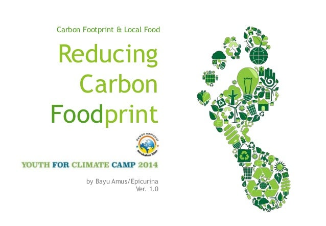 reducing carbon footprints essay