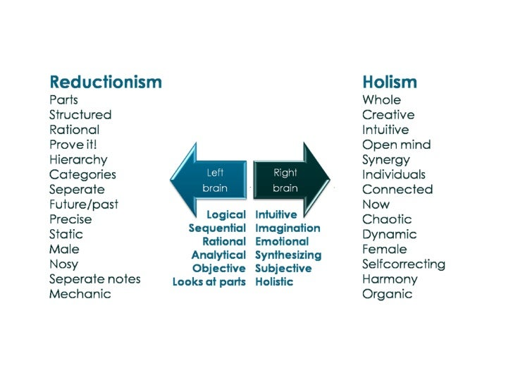 Holism Vs Reductionism Essay Examples - image 3