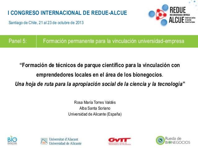 I CONGRESO INTERNACIONAL DE REDUE-ALCUE Santiago de Chile, 21 al 23 de octubre de 2013  Panel 5:  Formación permanente par...