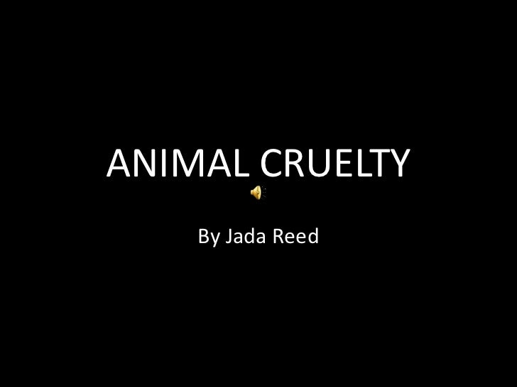 ANIMAL CRUELTY<br />By Jada Reed<br />