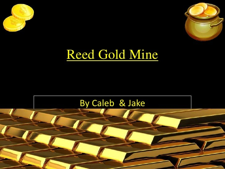 Reed Gold Mine<br />By Caleb & Jake<br />
