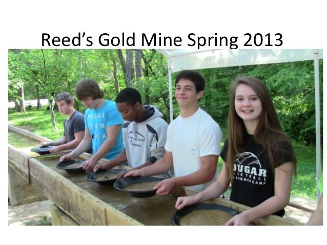 Reed's Gold Mine Spring 2013