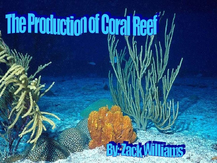 The Production of Coral Reef By: Zack Williams