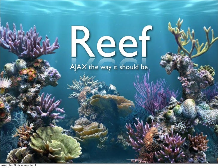 Reef                                AJAX the way it should bemiércoles 29 de febrero de 12