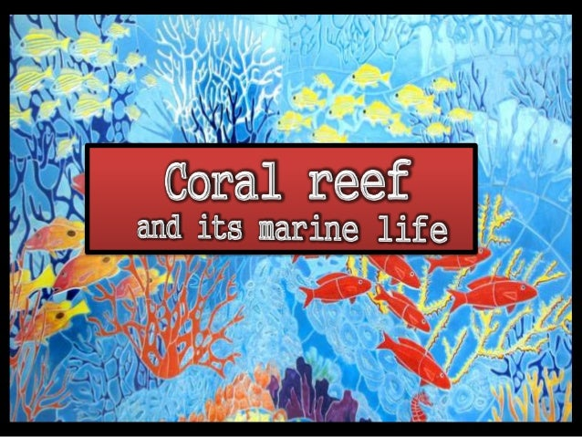 Corals are marine invertebrates which secrets calcium carbonate to form coral reefs in which small fishes live in colonies.