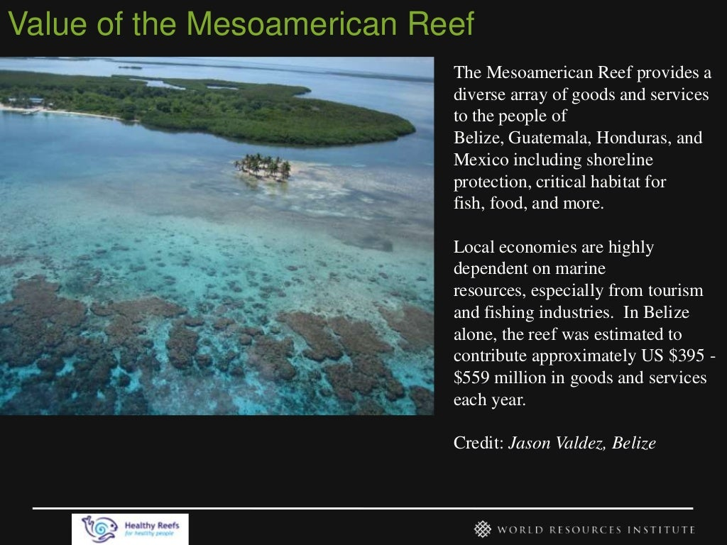 Value of the Mesoamerican Reef