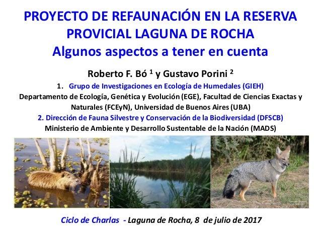 PROYECTO DE REFAUNACIÓN EN LA RESERVA PROVICIAL LAGUNA DE ROCHA Algunos aspectos a tener en cuenta Roberto F. Bó 1 y Gusta...
