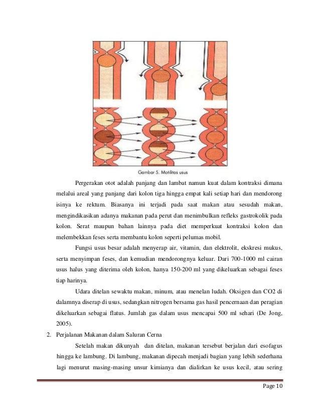 Hemorrhoids vs. Colon Cancer