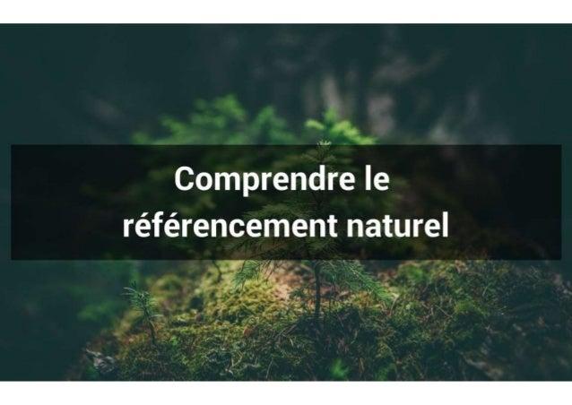 Comprendre le référencement naturel
