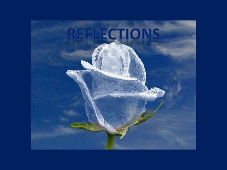 Reflections<br />