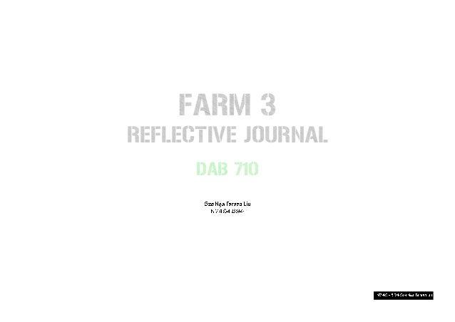 FARM 3 REFLECTIVE JOURNAL DAB 710