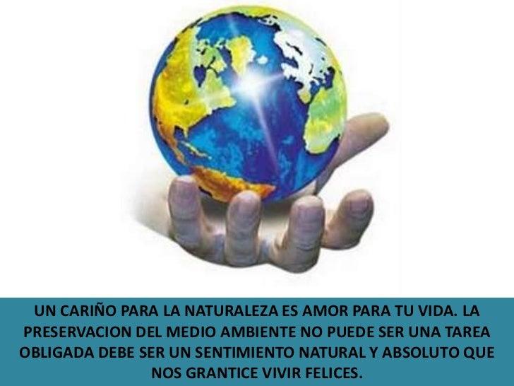 Reflexiones De La Vida Cortos: Reflexiones Ecologicas Grado 901