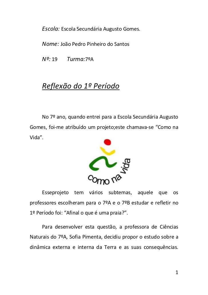 Escola: Escola Secundária Augusto Gomes.     Nome: João Pedro Pinheiro do Santos     Nº: 19     Turma:7ºA     Reflexão do ...
