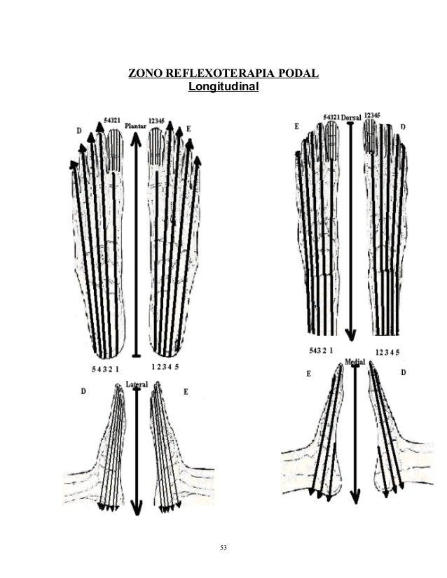 Manual de Reflexologia Integral Aplicada (Aprenda uma