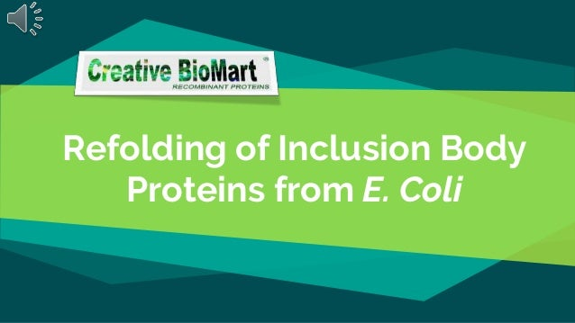 Refolding of Inclusion Body Proteins from E. Coli