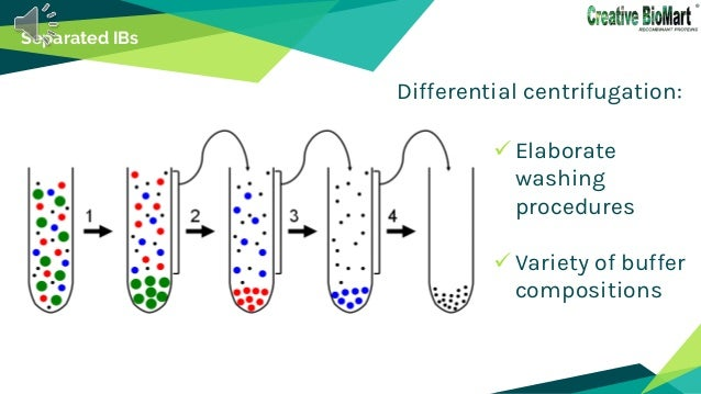 Separated IBs  Elaborate washing procedures  Variety of buffer compositions Differential centrifugation: