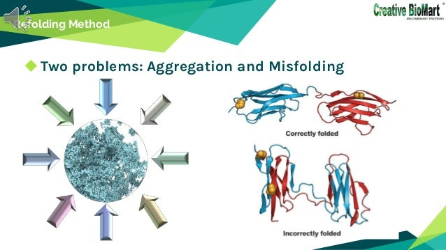 Refolding Method Two problems: Aggregation and Misfolding