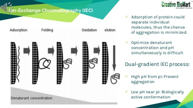 Ion-Exchange Chromatography (IEC)  Adsorption of protein could separate individual molecules, thus the chance of aggregat...