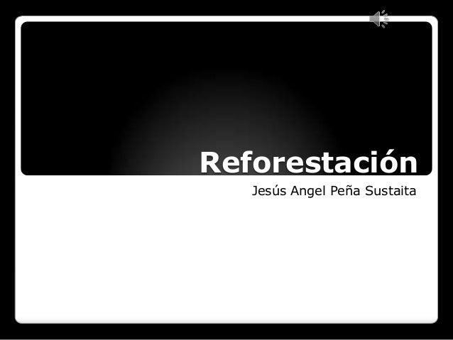 Reforestación Jesús Angel Peña Sustaita
