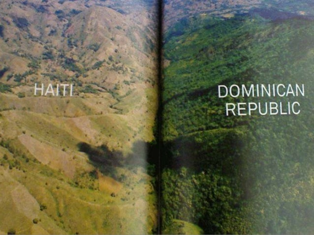 When Christopher Columbus arrived in Haiti it was 98% forested Today's total forest cover is 3.8%