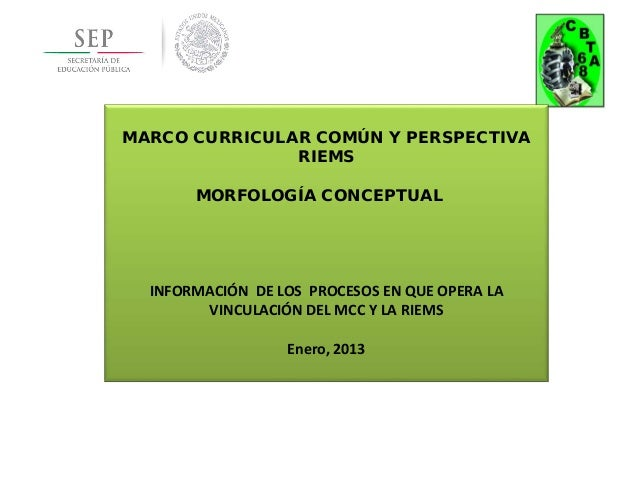 MARCO CURRICULAR COMÚN Y PERSPECTIVA               RIEMS       MORFOLOGÍA CONCEPTUAL  INFORMACIÓN DE LOS PROCESOS EN QUE O...