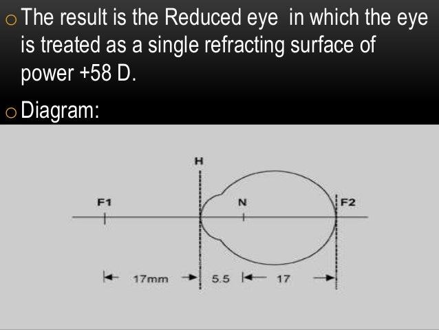 schematic eye and reduced eye  | slideshare.net