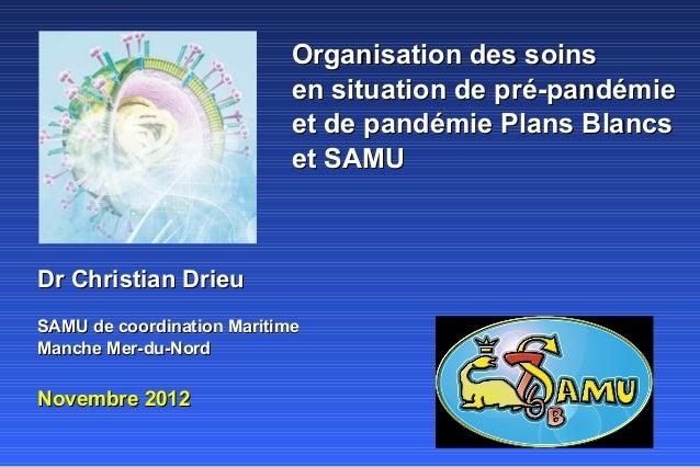 Organisation des soins                            en situation de pré-pandémie                            et de pandémie P...