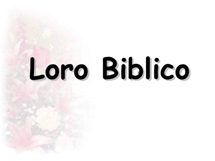 Loro Biblico