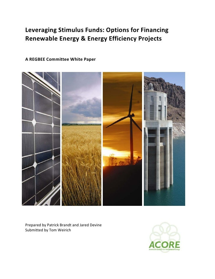 Leveraging Stimulus Funds: Options for Financing  Renewable Energy & Energy Efficiency Projects      A REGBEE Committee Wh...