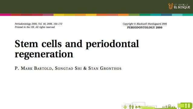 Stem Cells en el Ligamento Periodontal Propiedades Tasa de proliferación más alta que las stem cells en médula ósea Alta c...