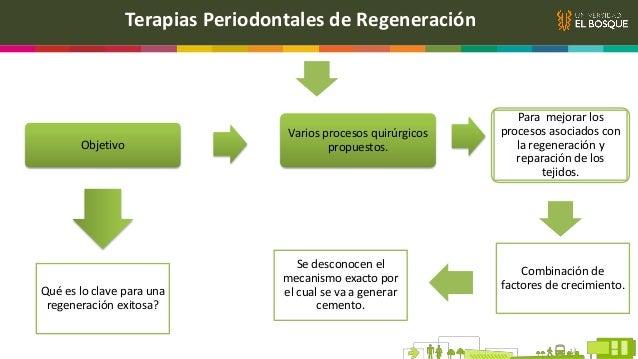 Generalidades I. Papel de las moléculas bioactivas en la regeneración periodontal Grupo de moléculas de señalización que n...