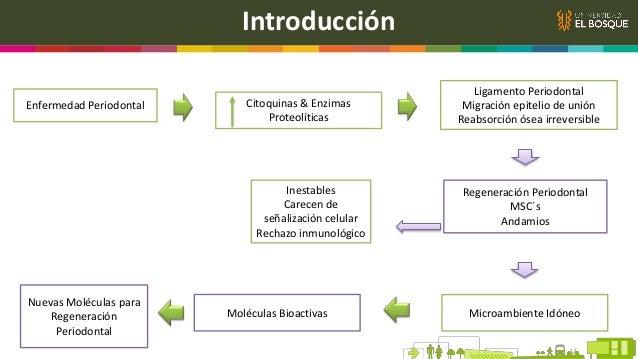 Generalidades VII. Farmacéuticos Aspirina Melatonina AINE Administración local  Controla inflamación Ratones  + Formació...