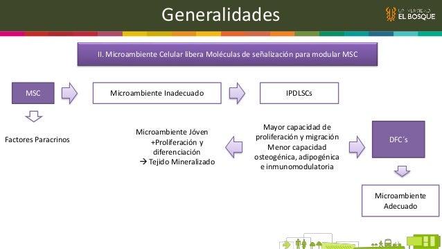Generalidades IX. Moléculas Bioactivas Potencializan Efectos de Agregados Celulares en Regeneración Periodontal Andamios ...