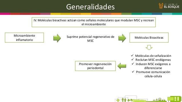 Conclusiones Las moléculas bioactivas muestran efectos prometedores en la reparación del microambiente dañado y en la modu...