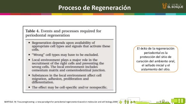 Proceso de Regeneración El éxito de la regeneración periodontal es la protección del sitio de curación del ambiente oral, ...