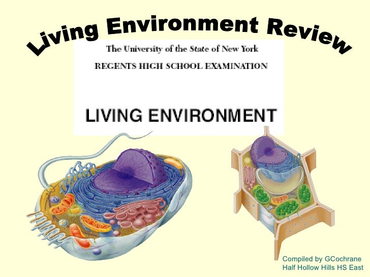 Living Environment Review  Compiled by GCochrane Half Hollow Hills HS East
