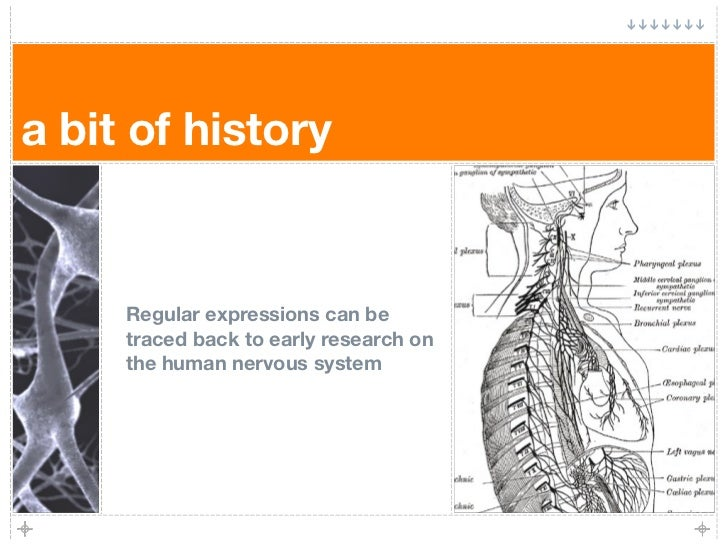 a bit of history        Regular expressions can be      traced back to early research on      the human nervous system