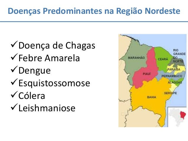 Doenças Predominantes na Região Nordeste Doença de Chagas Febre Amarela Dengue Esquistossomose Cólera Leishmaniose