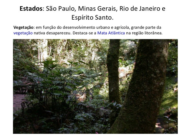 Estados : São Paulo, Minas Gerais, Rio de Janeiro e Espírito Santo. Vegetação : em função do desenvolvimento urbano e agrí...