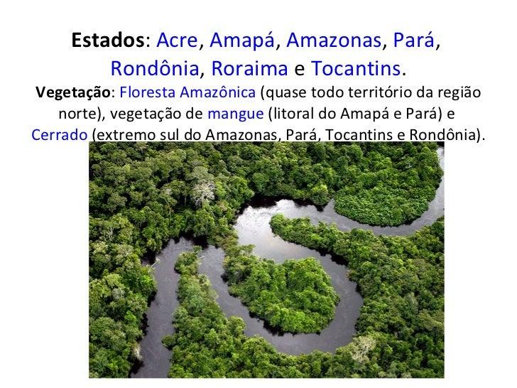 Estados : Acre ,  Amapá ,  Amazonas ,  Pará ,  Rondônia ,  Roraima  e  Tocantins . Vegetação :  Floresta Amazônica  (quas...