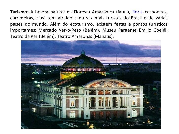 Turismo:  A beleza natural da Floresta Amazônica (fauna,  flora , cachoeiras, corredeiras, rios) tem atraído cada vez mais...