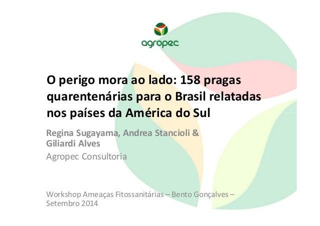 O perigo mora ao lado: 158 pragas  quarentenárias para o Brasil relatadas  nos países da América do Sul  Regina Sugayama, ...