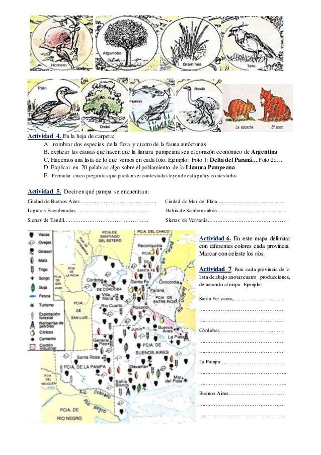 Actividad 4. En la hoja de carpeta; A. nombrar dos especies de la flora y cuatro de la fauna autóctonas B. explicar las ca...