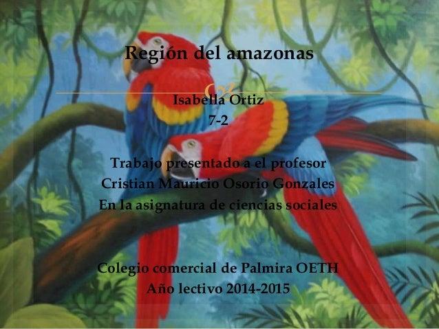  Región del amazonas Isabella Ortiz 7-2 Trabajo presentado a el profesor Cristian Mauricio Osorio Gonzales En la asignatu...